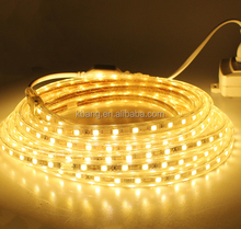 Zhongshan factory wholesale SMD2835 60LED flex strip light AC220V 110V waterproof led lamp warm white