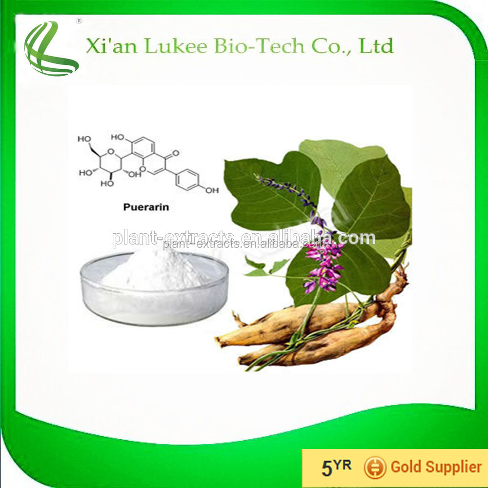 Factory Price for 100% Natural Puerariae P.E. / Puerarin / Radix Puerariae Extract / Herb extract