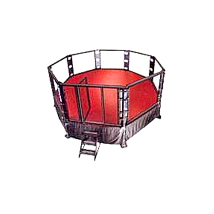 professional boxing ring/international standard boxing equipment for competition, training