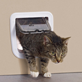 cat flap door