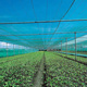 Top Quality 80% shade rate green uv treated net shade cloth for greenhouse cover