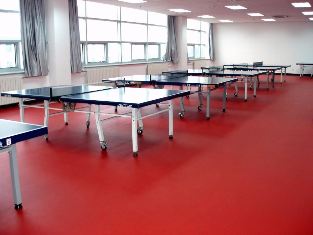 Durable insonoris es vinyle plancher de tennis de table for Longueur terrain de tennis