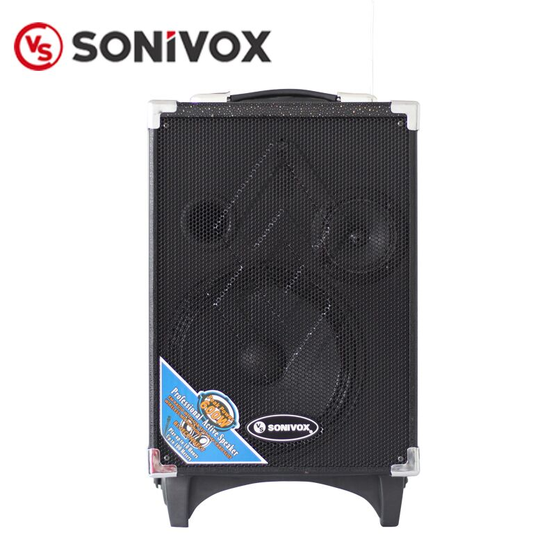 PA System Karaoke Player with Wireless Microphone Subwoofer Trolley Speaker 8 Inch