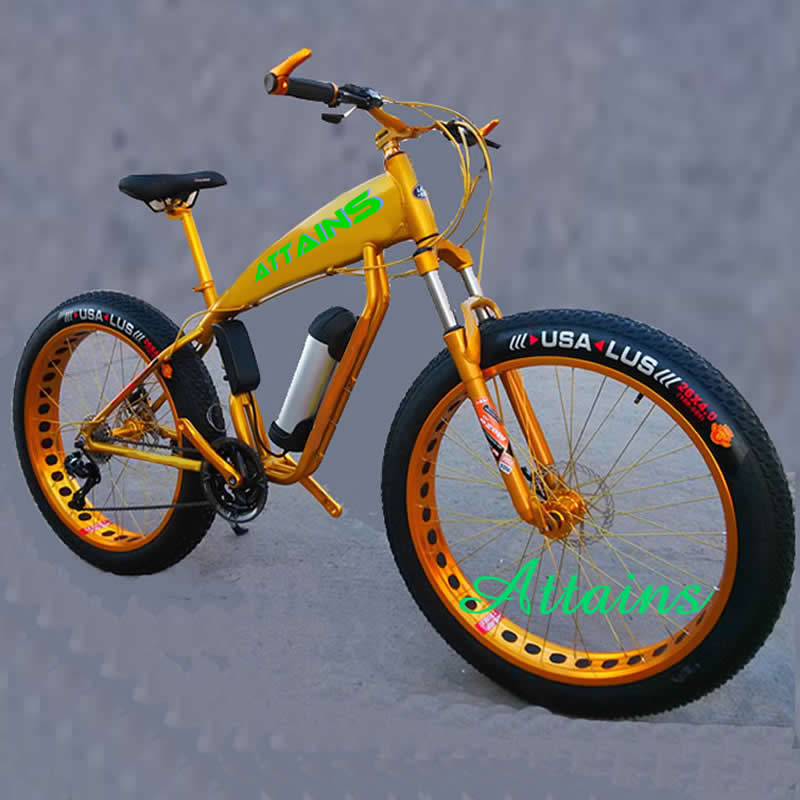 Different Models of electric dirt e bike with fat tyre From China supplier