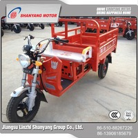 China wholesale custom 110CC three wheel motorcycle , 1P52FMH gasoline(petrol) tricycle for adults