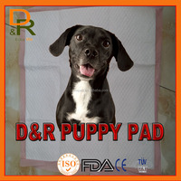 puppy Dog traing pee pet pad