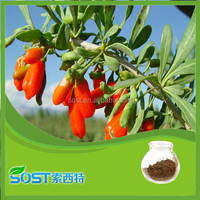 100 Percnet pure natural Chinese Wolfberry Extract