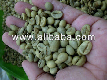 Java Robusta Green Coffee Beans Grade AP1