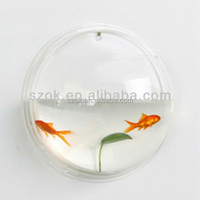 Clear round fish wall hanging acrylic aquariums