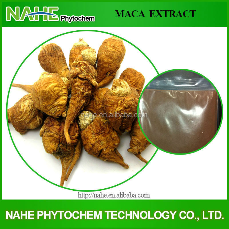 100% Pure Natural Men Sexual Health/Sex Medicines Product Maca Extract 10:1