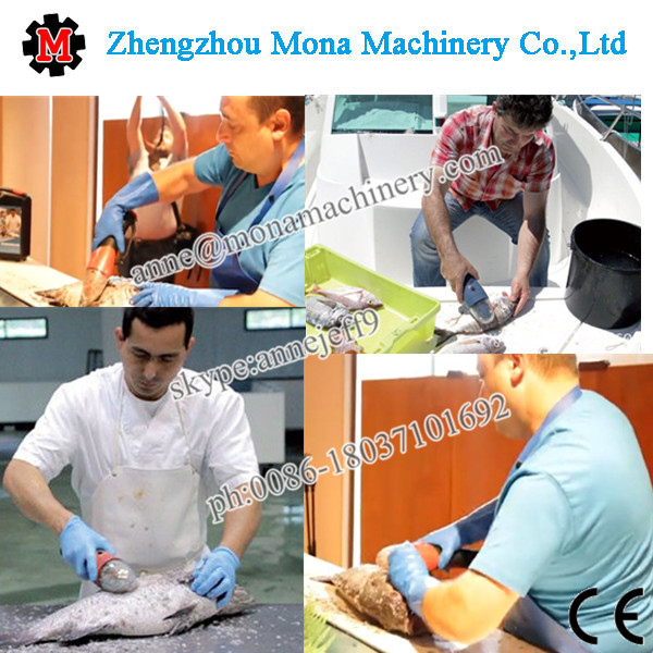 2015 fish scale remover products for food factory