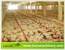 LEON most popular automatic poultry farm used broiler equipments for sale