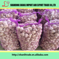 Chinese wholesale natural fresh garlic to importers