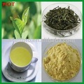 Instant Green Tea Powder,100% soluble in room temperature water