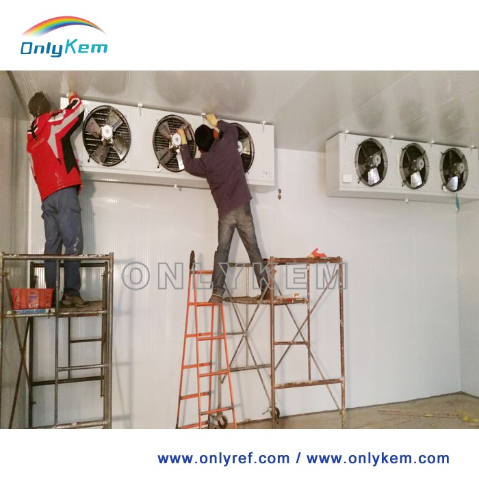 Professional solution for freezing cooling equipment cold room