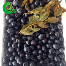 Factory prices natural organic frozen blueberry