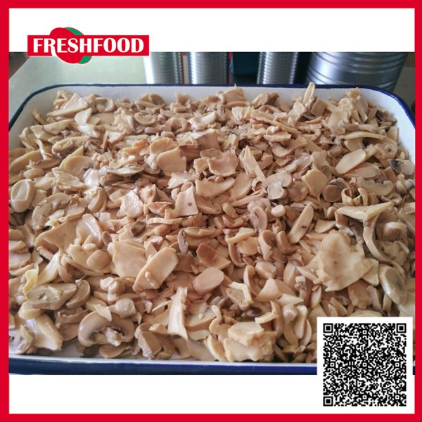Fresh canned oyster mushroom 1kg pieces price ,chinese food wholesale