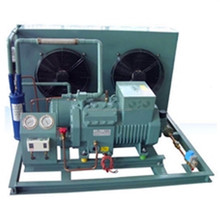 China refrigeration air cooled condensing unit for cold room