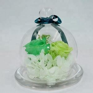 Amazon dried flowers preserved roses flower in glass for gift Valentine's Day(Export Japan Quality)