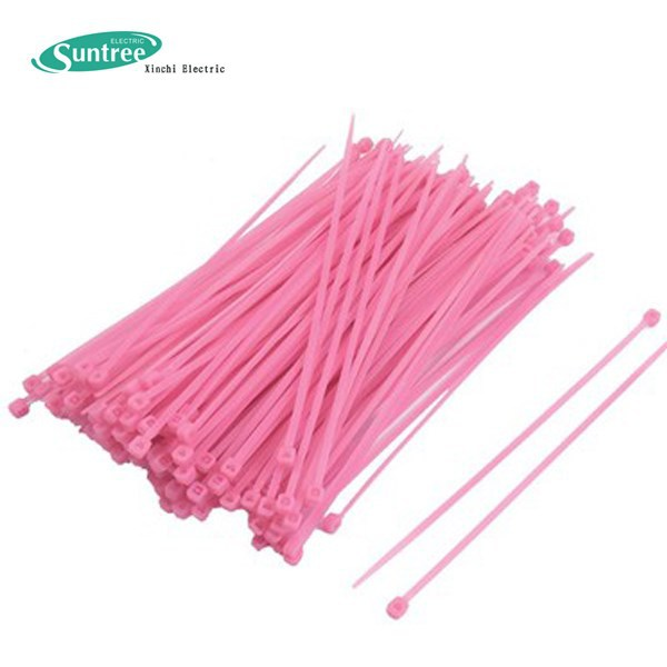 Natural Color Mounting Cable Tie