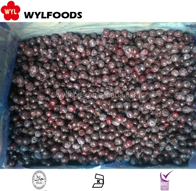Frozen Blueberry With Best Prices