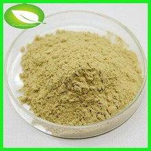 Curing Cardiovascular disease 100% organic benefits of ginger powder ginger extract