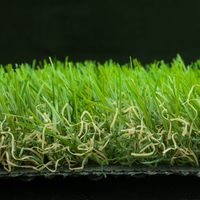 Aesthetic appearance hotsell fifa artificial grass carpet