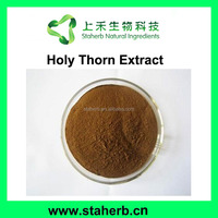China factory manufacturer 10:1 20:1 holy thorn extract holy thorn P.E.