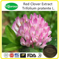 High Quality Red Clover Extract/8%-40%Isoflavones Red Clover Extract