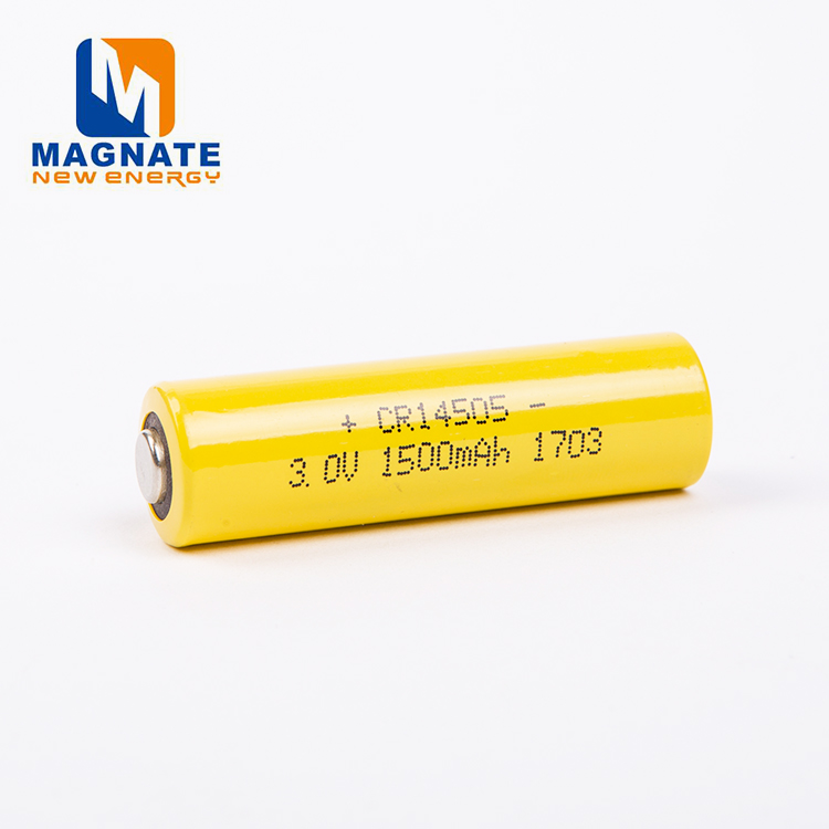 Good Price High Capacity Security Systems LiMnO2 Cylindrical Battery
