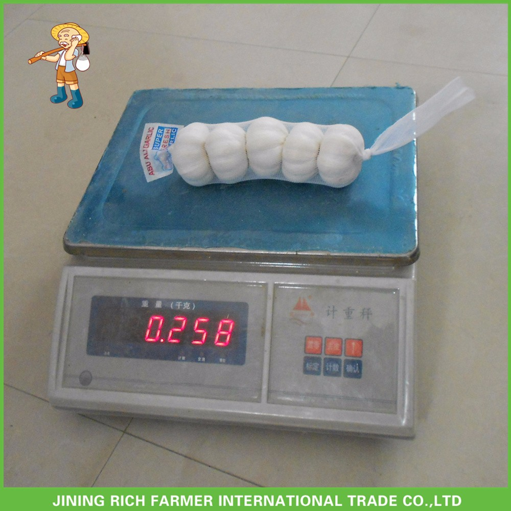 2017 Hot Sale Fresh White Garlic Mesh Bag In Carton Good Price High Quality