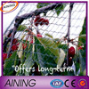 Bird cage netting/high strength anti bird net/vineyard bird netting