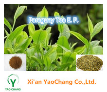 High Quality Natural Paraguay Tea Extract Powder