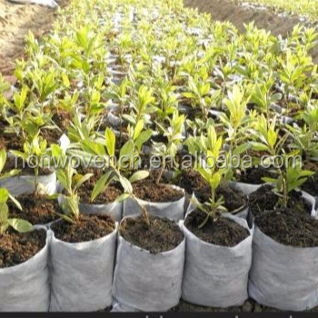 Eco friendly breathable PP nonwoven fabric grow bags/plant protective jackets/Frost protection bag plant