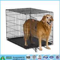 wholesale cheap stainless steel xxl large pet dog crate cages