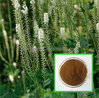 Wholesale Black Cohosh Extract with low price
