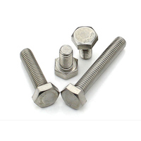 Stainless Steel 304 Bolts And Fasteners