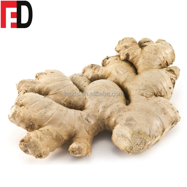 Buyers of fresh ginger export seeds, nigerian ginger in bangladesh