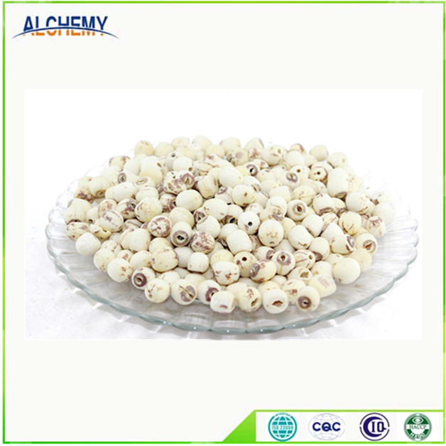 Dried White lotus seed with plumule removed
