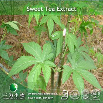 Sweet tea Extract Rubusoside 70 %CAS.NO:64849-39-4.