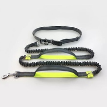 Multifunctional Hands Free Nylon Pet Leash Reflective Dog Lead Dog Bungee Leash For Running Walking Jogging