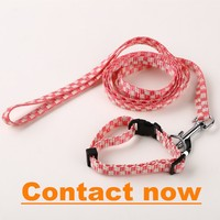 dog collars and leads L040811