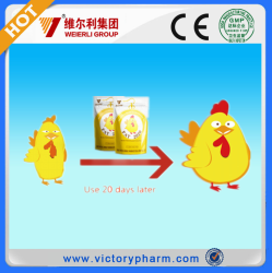 GMP Safty Natural Broiler weight Gain Medicine