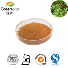 GMP Factory Supply Rauwolfia Serpentina P.E./Rauwolfia Serpentina Extract