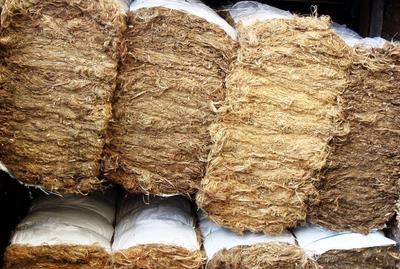 High Quality Kenaf Fiber in Bales