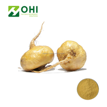 Maca Extract Or Powder 4 :1 10:1