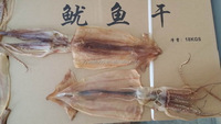 Dried Illex Squid 7-9pcs/kg