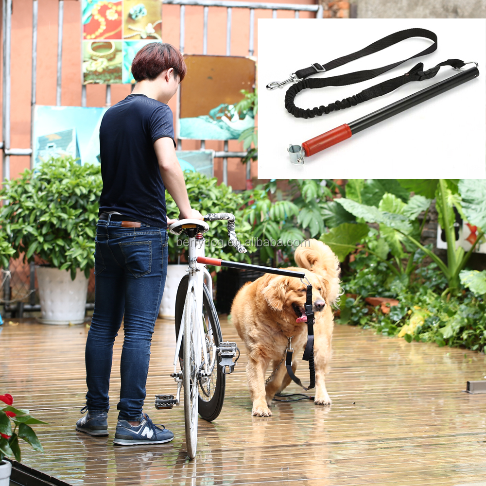 Hands Free Dog Bike Training Leash Bicycle Bungee Lead Exerciser