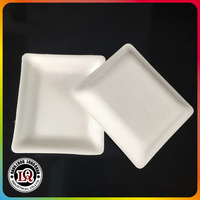 Disposable Bagasse Dinner Tray