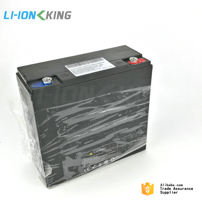 LI-ION KING Integrated 10A BMS LiFePO4 12V 20Ah Battery Pack